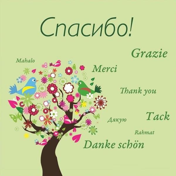 Спасибо за поздравления на английском языке